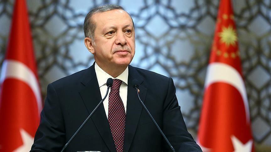 أردوغان يعلق على اتفاق ترسيم الحدود البحرية بين مصر واليونان