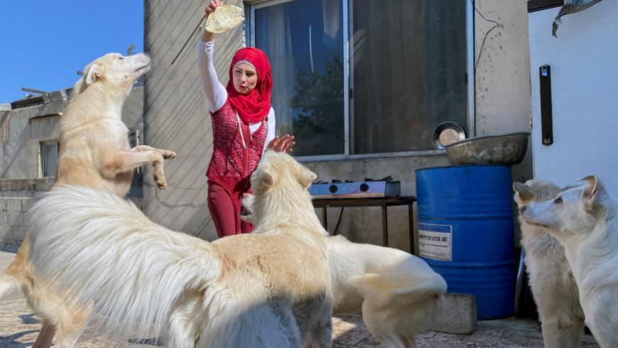 امرأة تبيع ممتلكاتها لرعاية 140 قطاً وكلباً في منزلها بدمشق