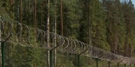 بينهم 7 سوريين.. حرس الحدود البولندي ينقذ مهاجرين علقوا في مستنقع