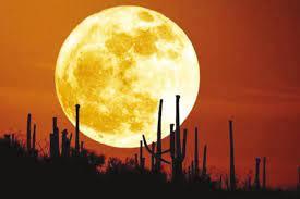 قمر الحصادين  ظاهرة فلكية نادرة تشاهد مساء اليوم